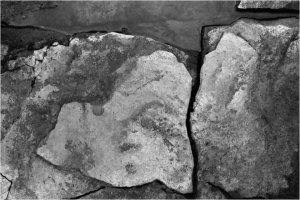 Rocks I